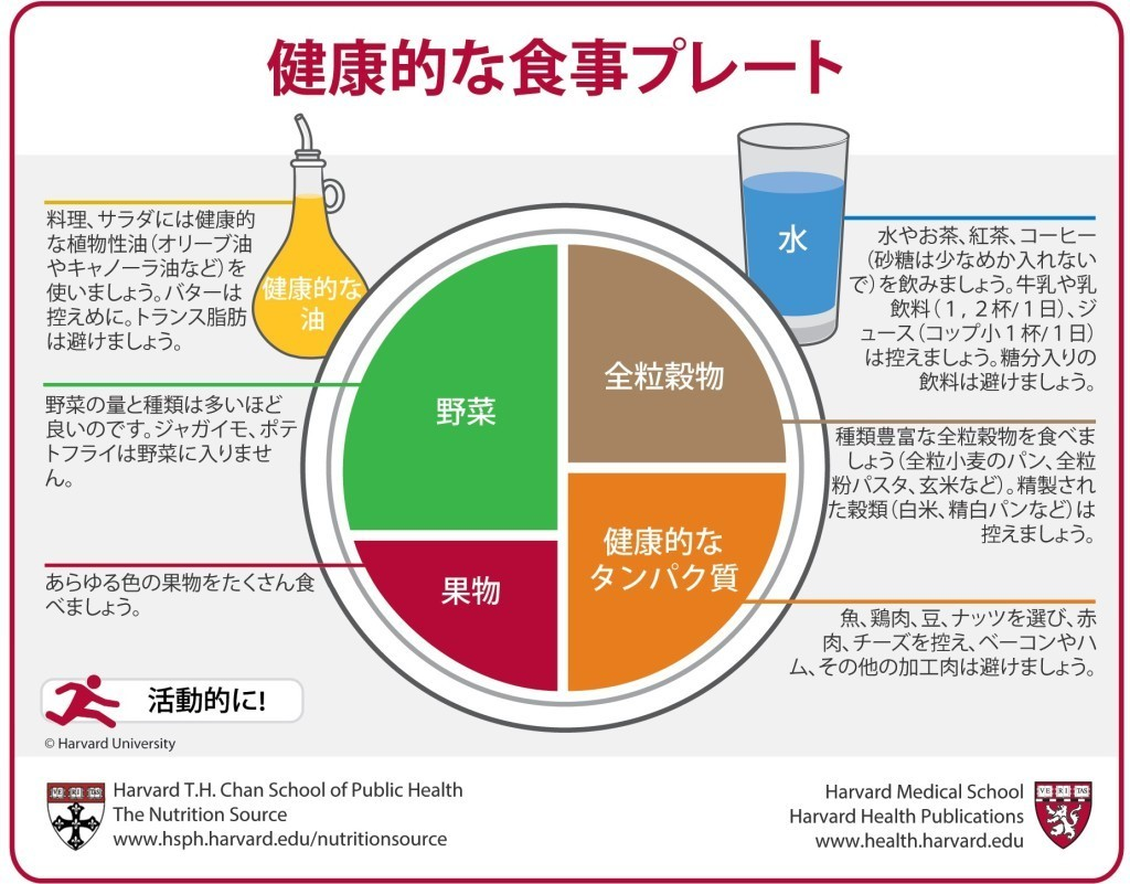 ハーバードが提唱する健康的な食事プレート