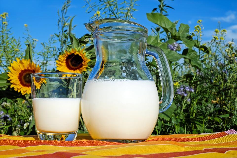 「牛乳は骨に良い」は幻想だと認識しよう