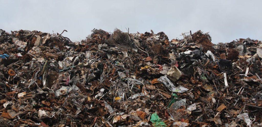 食料廃棄物のヤバい影響【数字で見る】