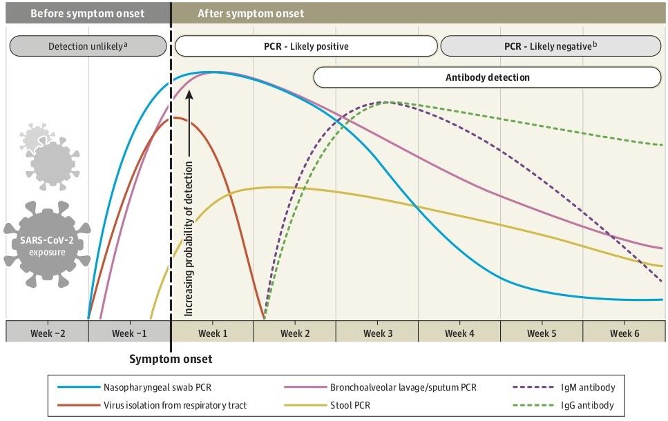 これがPCRと抗体検査の、今の所のガイダンスだ
