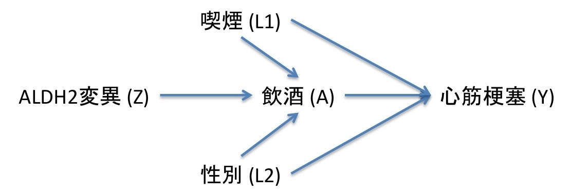 DAGの真髄はMarkov factorizationだということの説明