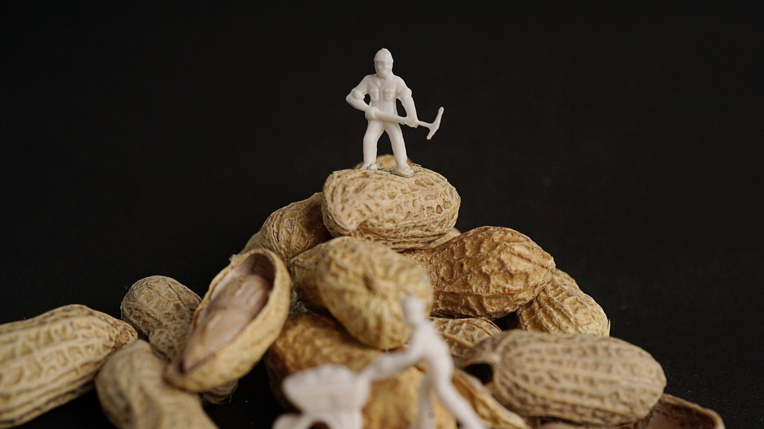 栄養素と健康アウトカムの関連性をみるモデル